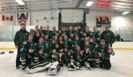 Plenty of senior hockey action scheduled in region