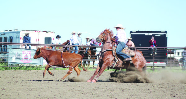 Kerrobert Rodeo provides plenty of action