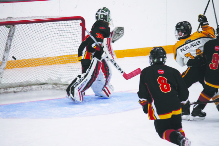 West Central Wheat Kings roundup