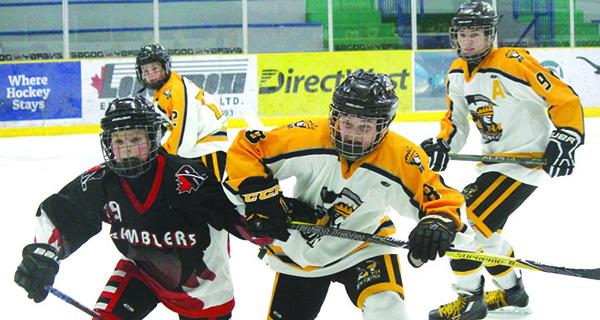 Wheat Kings minor hockey wrap-up