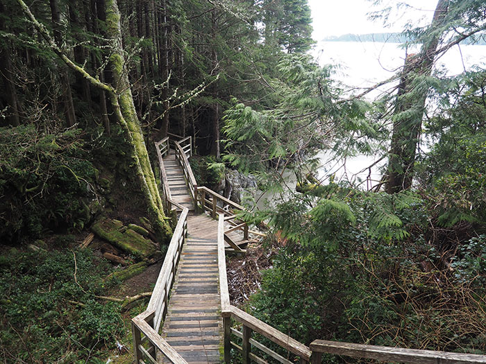 Tonquin Trail