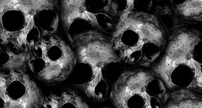 Human skulls piled on one another